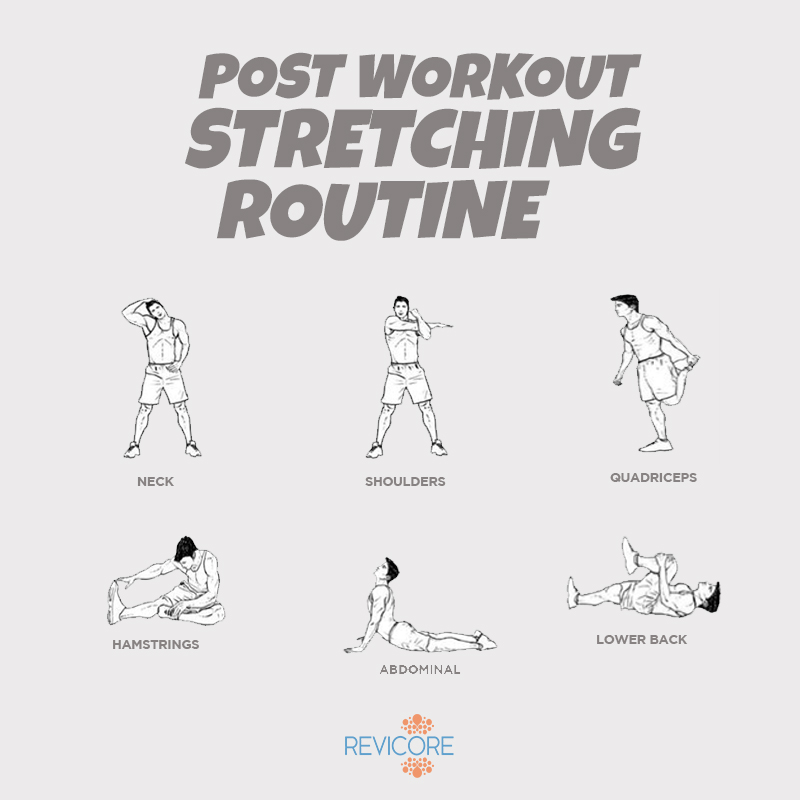 REVICORE STRETCHING SUGGESTIONS - REVICORE.COM